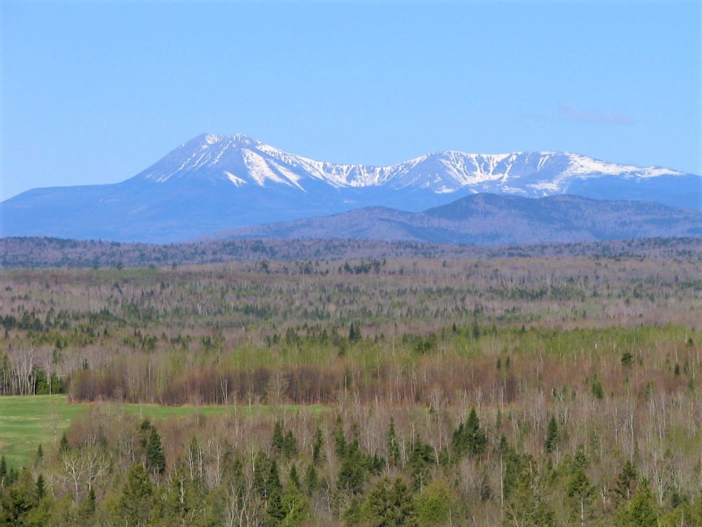 photo of maine forest with mount katahdin in the background