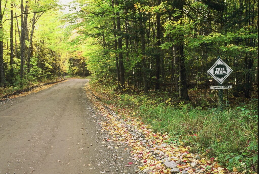 photo of pingree heirs tree farm sign along road in forest