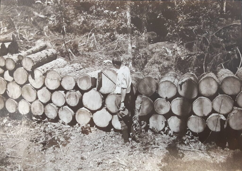 black and white photo of man standing next to stacked logs
